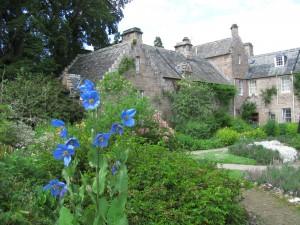 Flower Garden, Cawdor Castle Gardens: sinivaleunikko