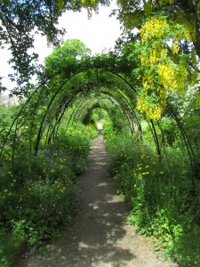 Flower Garden, Cawdor Castle Gardens: kukkiva kaarikäytävä
