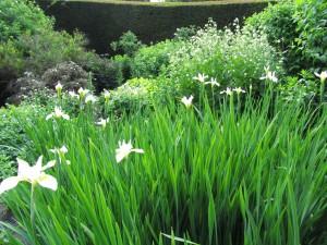 Walled Garden, Cawdor Castle Gardens: iirikset