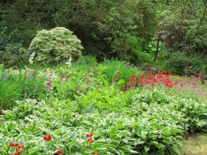 Esikoita Craraen puutarhassa