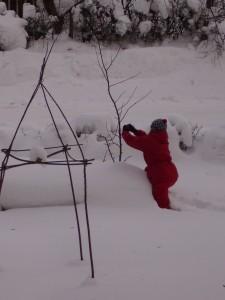 Täti Punainen hoitaa omenapuuta