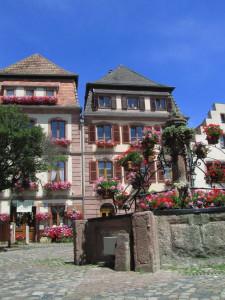 Bergheimin viinikylä