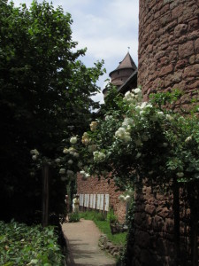Ruusuportti Haut-Kœnigsbourgissa