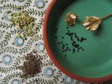 Ryytineidon, fenkolin ja kuminan siemeniä