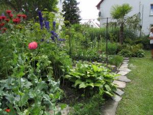 Eksoottinen puutarha