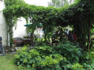 Ihana terassi vanhojen köynnösten siimeksessä