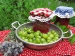 Sato säilöön: laventeli-karviaismarjahillo