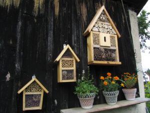 Kolme pientä hyönteishotellia vajan seinustalla