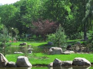 Kadriorgin puiston japanilaistyylinen puutarha