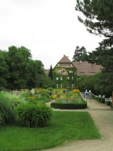 Kasvitieteellinen puutarha Berlin-Dahlemissa