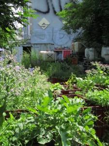 Prinzessinnengarten