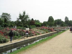 Kanava IGS Hampuri-Wilhelmsburgissa