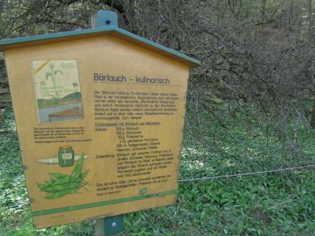 Rasti Eberbachin karhunlaukkapolulla