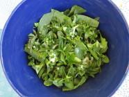 Vihersalaatti ruohosipuli-piparjuurivinaigrettella