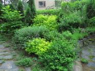 Vihreän sävyjä